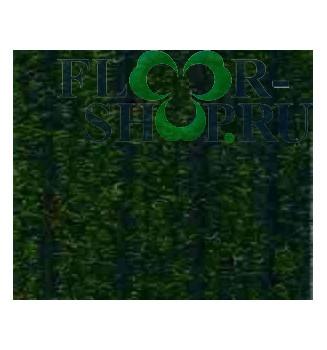 Атлас-гель 866 зеленый