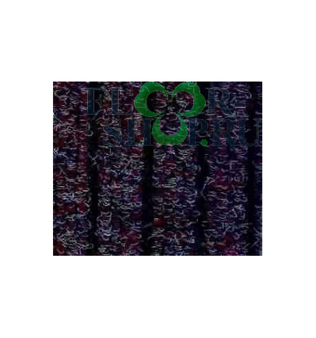Атлас-гель 888 слива