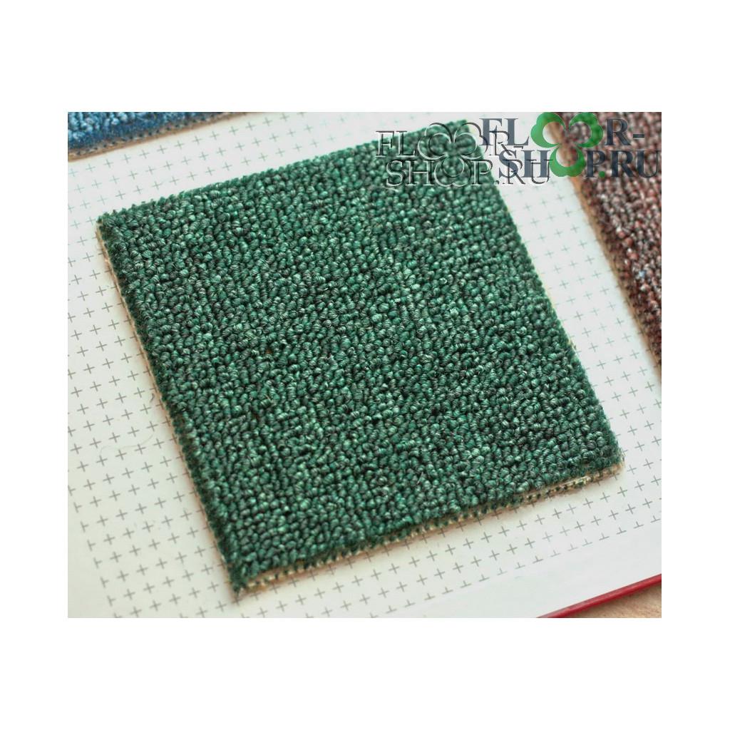 Астра 46 зеленый